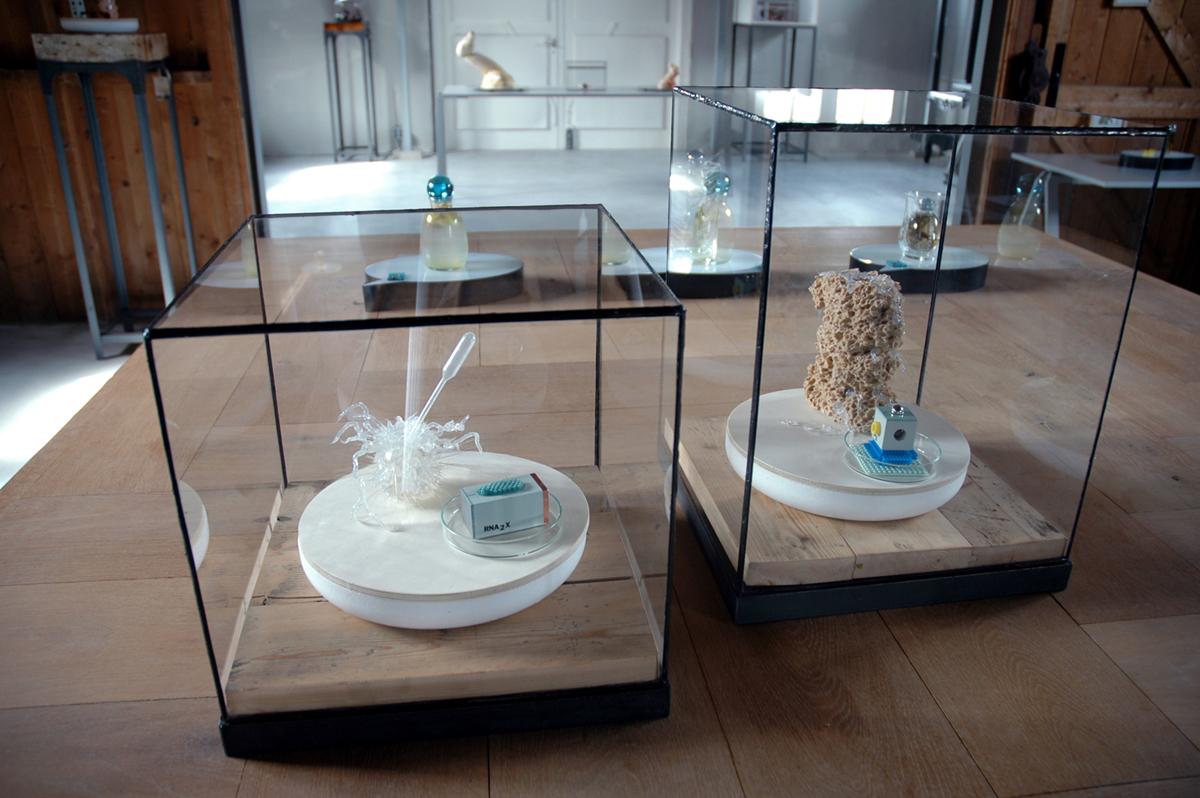 tentoonstelling BioArt in vitrine glas in lood